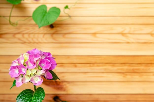 木製の柵の背景にピンクのアジサイ。あじさい大葉、ピンクのオルテンシアの花の茂みのコピースペース。バルコニーの家の花、庭のベランダのモダンなテラス。家の園芸、観葉植物。