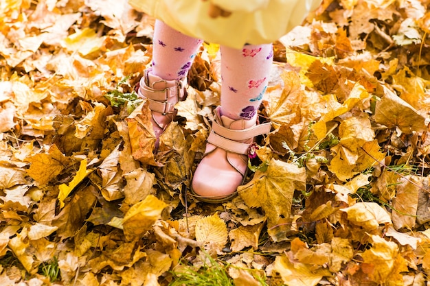 Pink kids shoes and yellow leaves. autumn nature