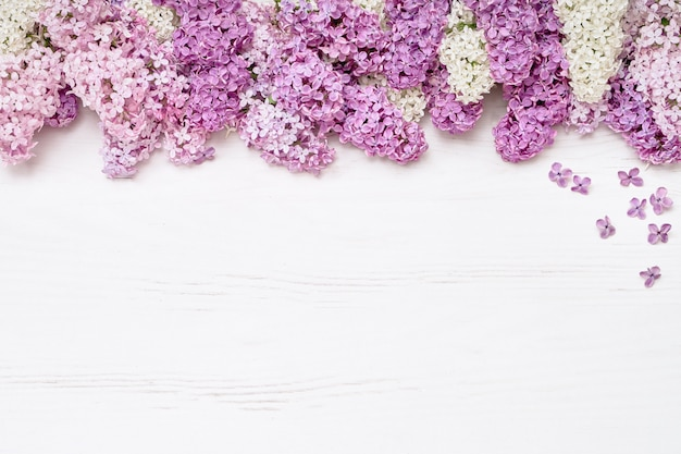 Pink lilac flowers on white background. top view, copy space. holiday concept. spring background.
