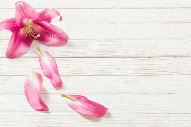 白い木製のピンクのユリの花