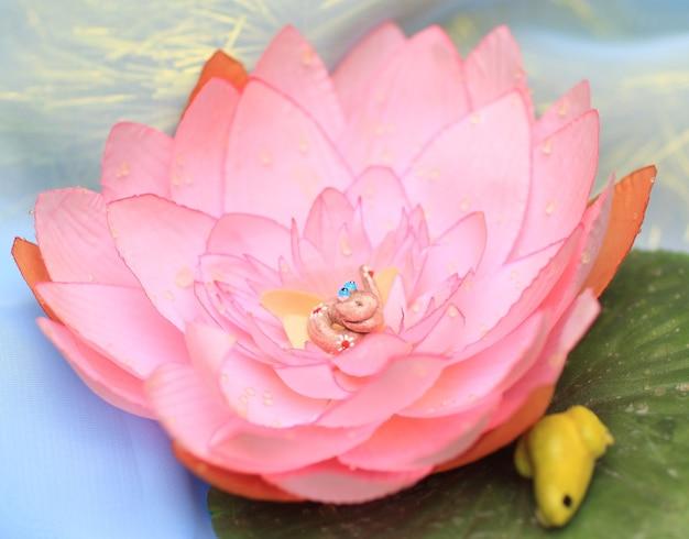 핑크 로터스 flowert