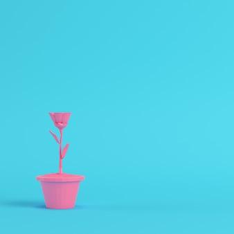 Розовый цветок низкой поли в горшке на ярко-синем фоне