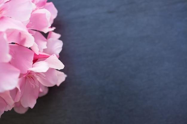검은 서양 협 죽도 꽃 검은 돌 배경에 가까이