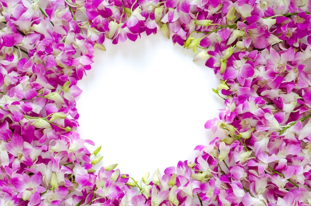 Pink orchid flowers frame