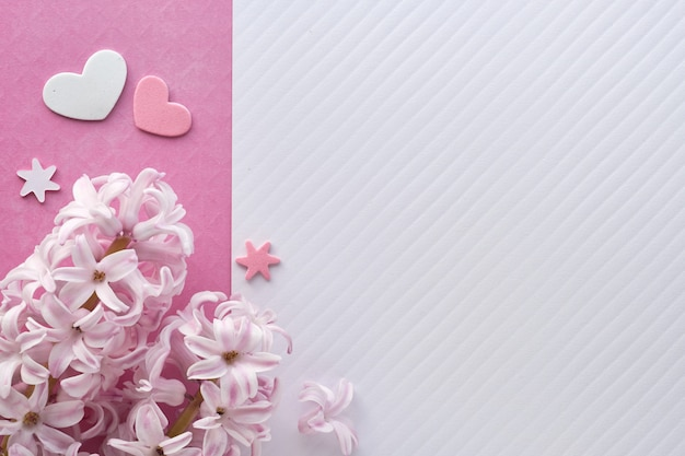 Pink pearl hyacinth flowers on colored paper  with decorative hearts, copy-space