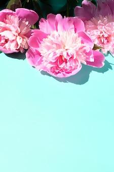 ピンクの牡丹とパステルカラーの表面に硬いシャドーが付いた葉、コピースペース。トレンディなパターン、夏のコンセプト。上面図。