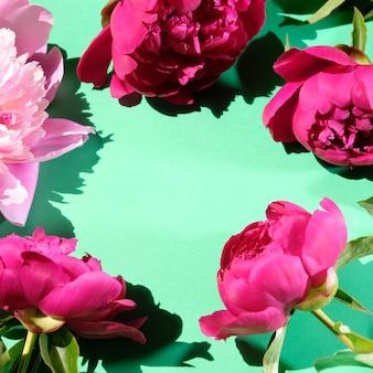 ピンクの牡丹とハードシャドウと葉。トレンディなパターン、夏のコンセプト。