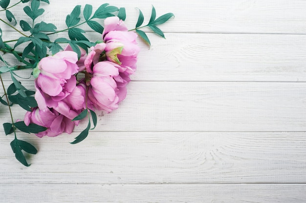Pink peonies and leaves