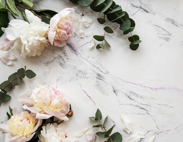 Pink peonies on a marble background