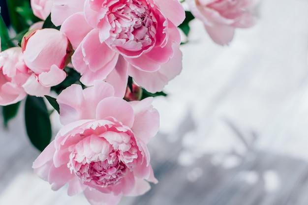 Розовый пион фон