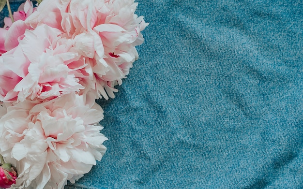 Pink peony on a blue denim with space for text