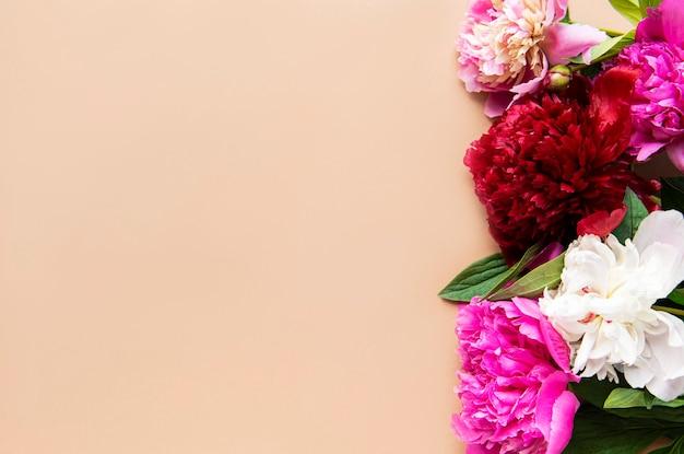 茶色の背景の境界線としてピンクの牡丹の花