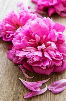 古い木の表面の境界としてピンクの牡丹の花