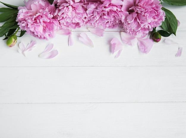 Pink peony flowers