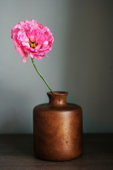 壁のそばの花瓶にピンクの牡丹
