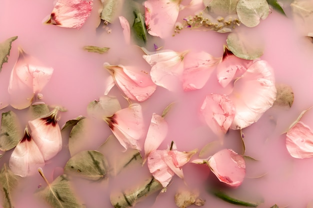 Pink petals in pink colored water