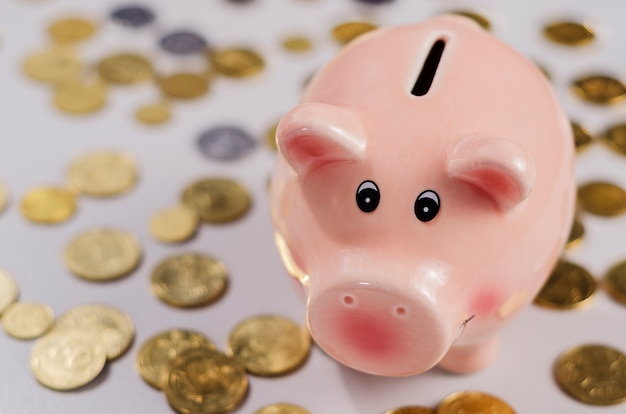 Pink pig moneybox and coins