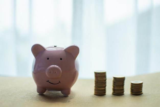 Pink pig piggy bank and money coin