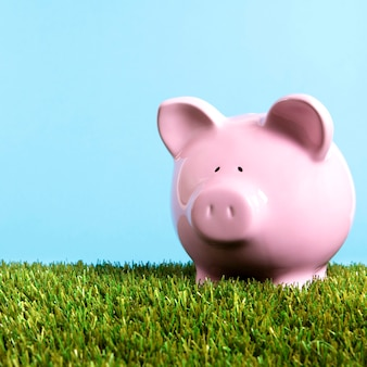 Pink piggy bank grass blue sky square
