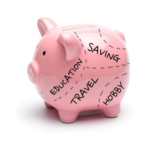 Pink piggy bank and inscriptions on it education travel savings hobby isolated