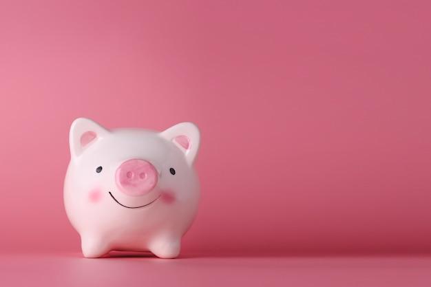 핑크 돼지 저금통에 고립 된 핑크