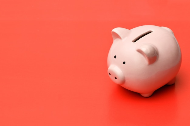 Pink piggy bank stands on the right on a red background with a shadow.