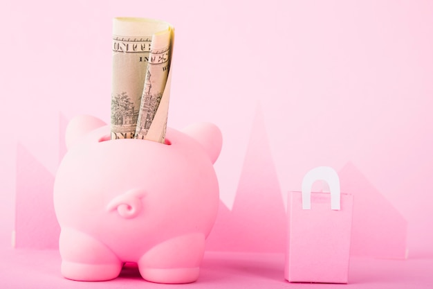Pink piggy bank with money and paper bag