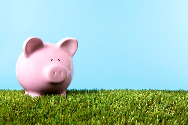 Pink piggybank over the grass