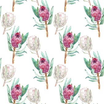 Pink protea flower watercolor illustration. seamless pattern design on a white background.