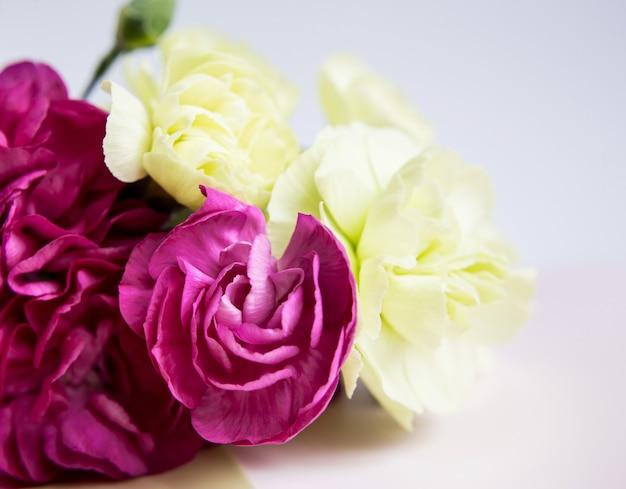 Розовые фиолетовые и желто-зеленые гвоздики на белом фоне сирени. розовые цветы. место для текста. день матери. открытка. день свадьбы. день святого валентина.