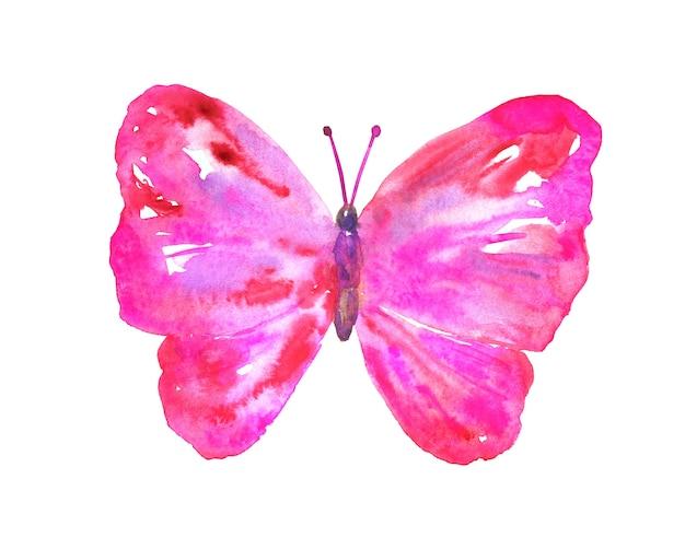 ピンクの赤い蝶。手描きの水彩イラスト。孤立。