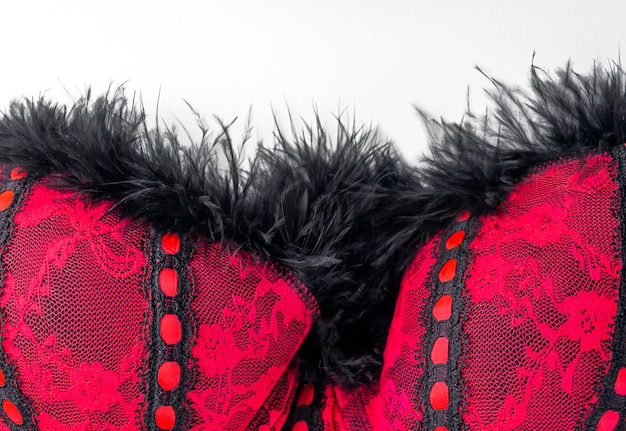 Pink red lace erotic lingerie with black feather of a bird, boa