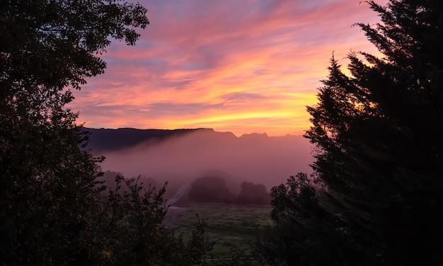 Розовый красный оранжевый рассвет в деревне с туманом