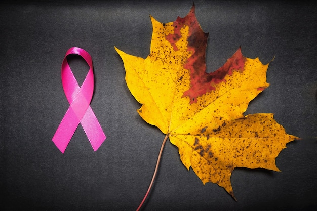 乳がんの意識を高めるピンクリボン、女性の乳がんの病気で暮らす人々の意識を高める象徴的な弓の色。黒の背景をクリッピングで分離された弓。腫瘍損傷の概念