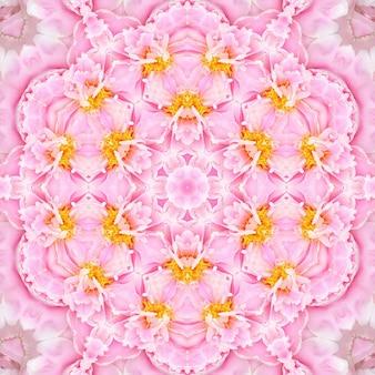 Pink rose flowers blurred, floral spring pattern background