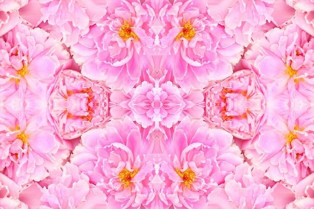 ピンクのバラの花がぼやけて、花の春のパターンの背景