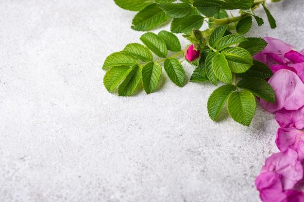 明るい背景に葉とピンクのバラのヒップの花びら