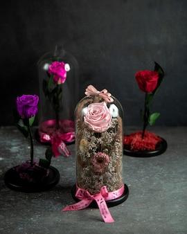 ガラスのドームのピンクのバラ