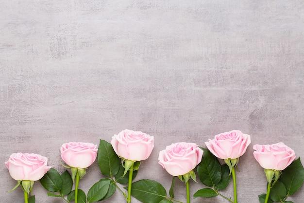 灰色の背景にピンクのバラ。フラットレイ、上面図