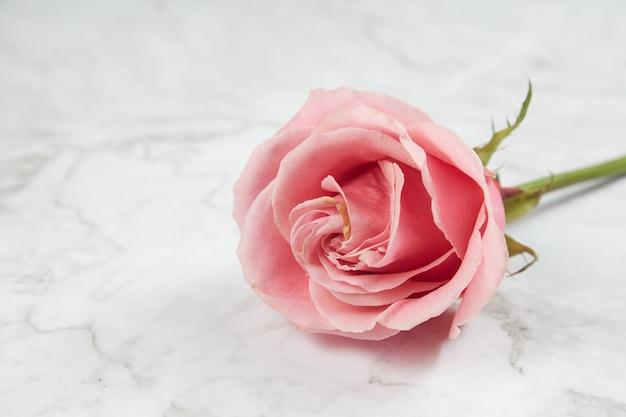 Marblle 배경에 핑크 로즈를 닫습니다.