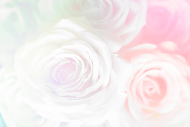 Розовая роза с рисунком фона