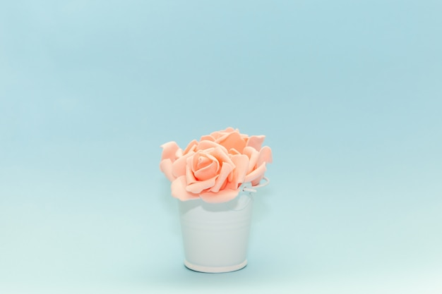 Pink rose petals in a white toy pail on a light blue background, flowers for the holiday