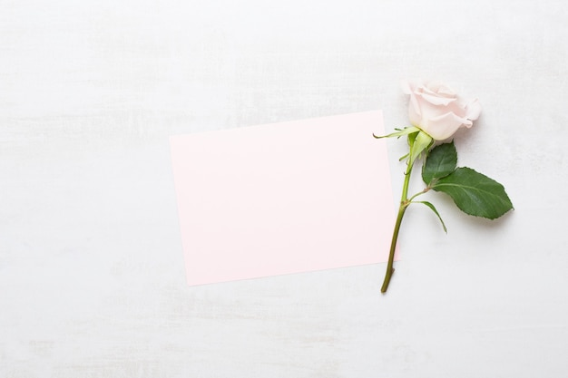 Pink rose with blank greeting card on gray background. flat lay, top view