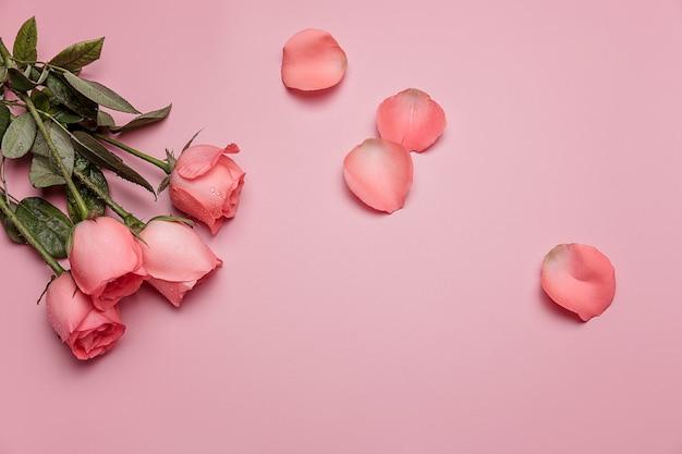 ピンクの背景に緑の葉とピンクのバラ。バレンタイン・デー