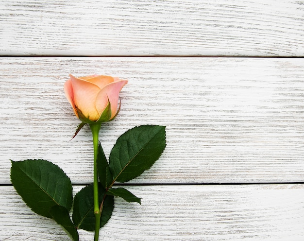 Pink rose on a wood