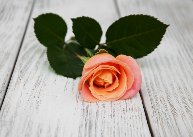 Pink rose on a wooden background