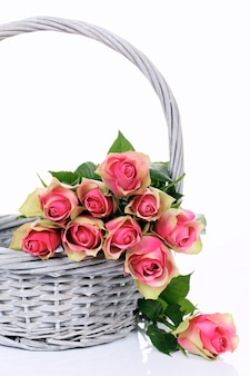 Pink roses in basket on white background