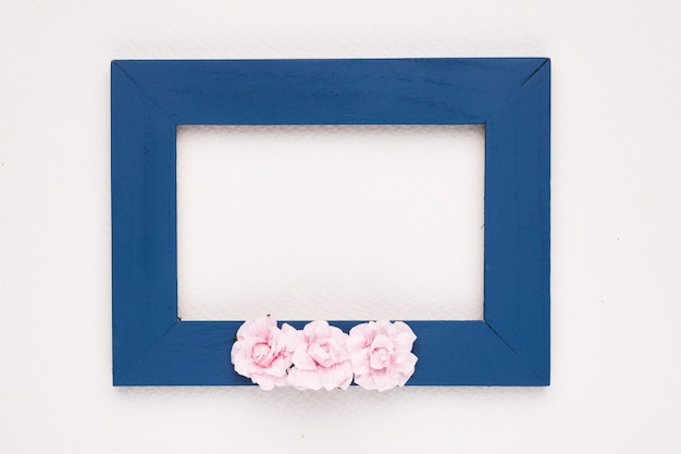 Pink roses on blue border frame over white backdrop