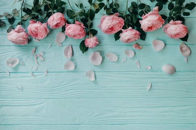 Pink roses on a blue table , summer concept