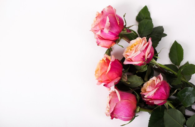 Pink roses bouquet isolated